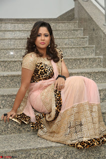 Shilpa Chakravarthy in Lovely Designer Pink Saree with Cat Print Pallu 059.JPG