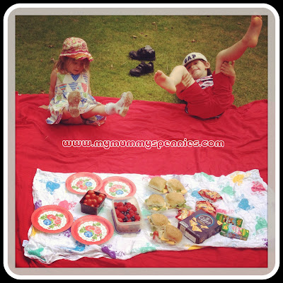 a fun summer picnic in the park