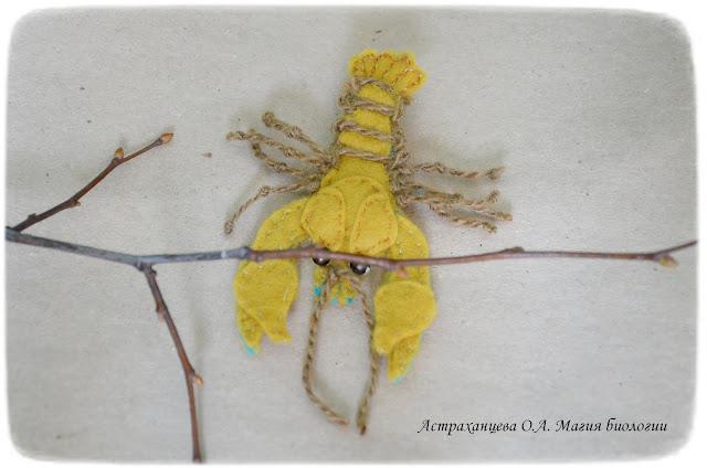 КОАПП_почему кусают насекомые_магия биологии, рак