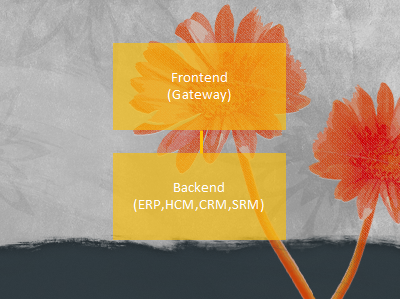 Automating Frontend Configuration of SAP Fiori