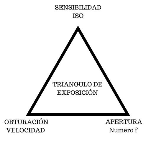 Los-Orígenes-de-la-Sensibilidad-ISO-en-Fotografía