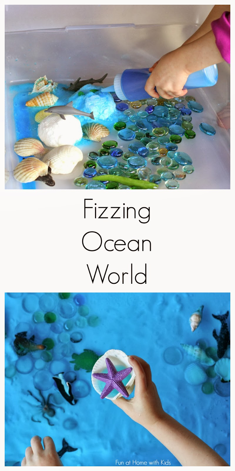 Simple small worlds fizzing hidden ocean world - Butterfly world com table tennis ...