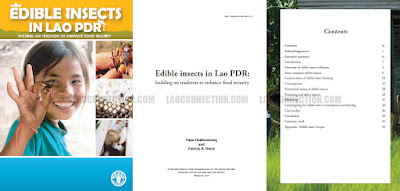 Edible Insects in Lao PDR