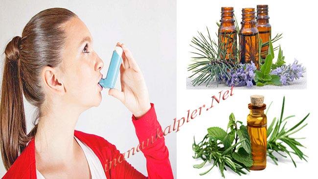 Astım Tedavisi İçin En İyi 7 Bitkisel Yağ