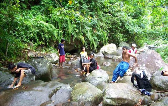 Hutan Wisata Sesaot Lombok