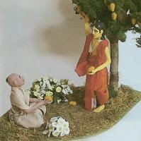 amra dando mangos a sus devotos
