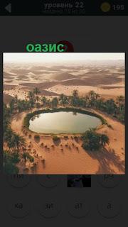 красивый оазис с озером на 22 уровне в игре 470 слов