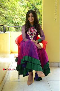 Actress Pooja Jhaveri Latest Stills in Purple Salwar Kameezt at Dwaraka Success Meet  0234.JPG