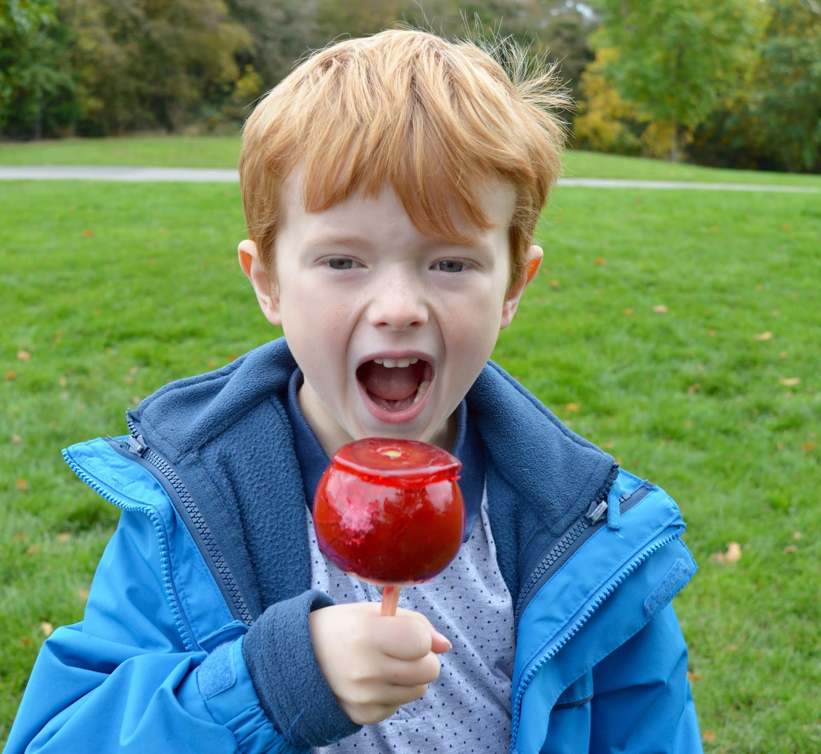 Half Term Hocus Pocus at Preston Park | The North East's very own Diagon Alley - toffee apple