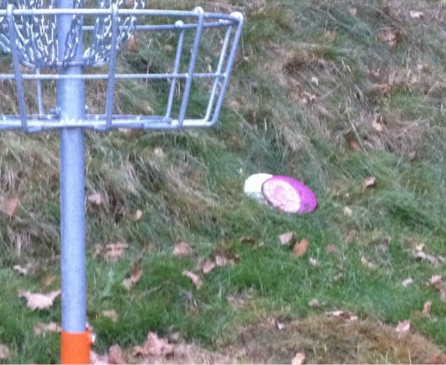 Disc Golf Herrensee 1