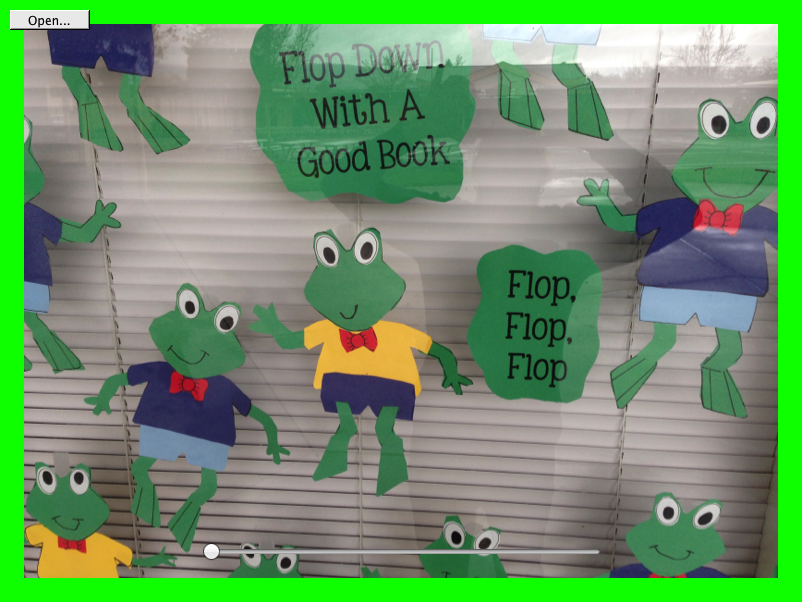Froggy window display