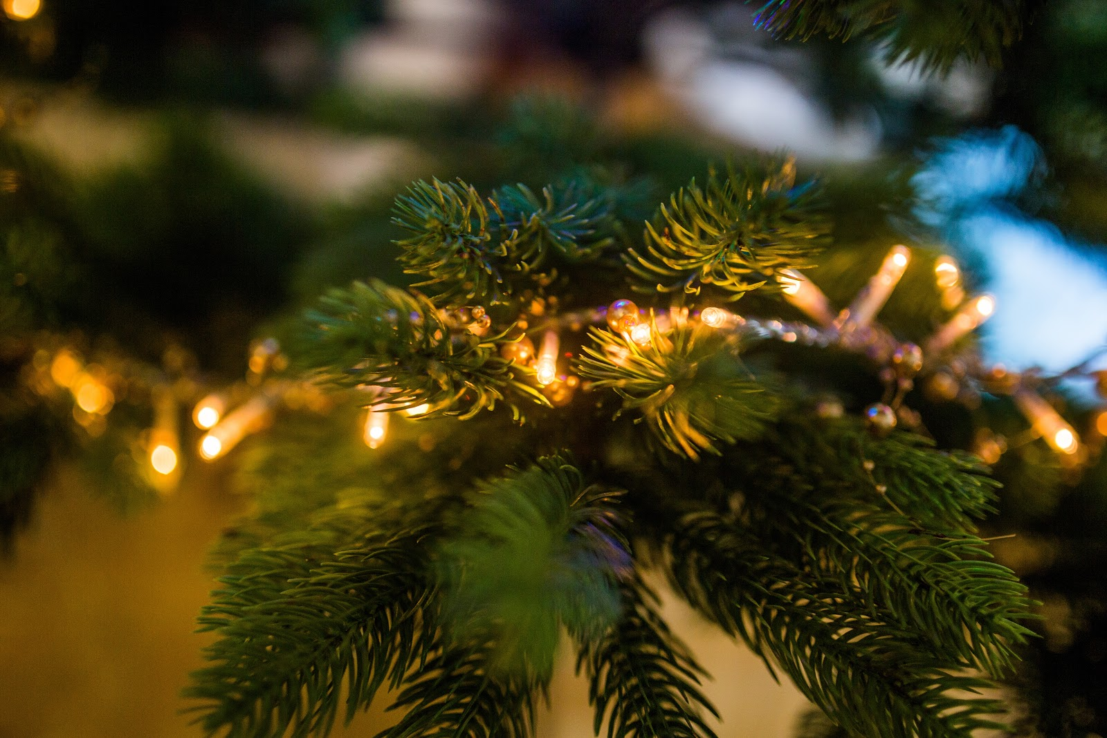 クリスマスツリーと飾り付けのライト