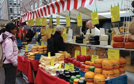 Taste Dutch Cheese