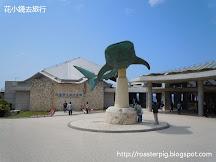 沖繩美麗海水族館免門票日 2016