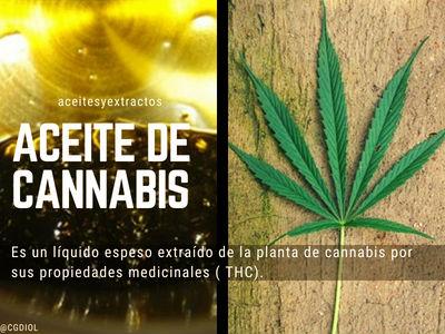 El Aceite de Cannabis tiene beneficios para las personas enfermas que sufren de dolor crónico
