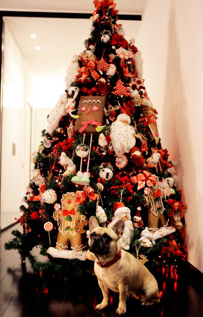 Dogs Decorating Christmas Tree Billingsblessingbags Org