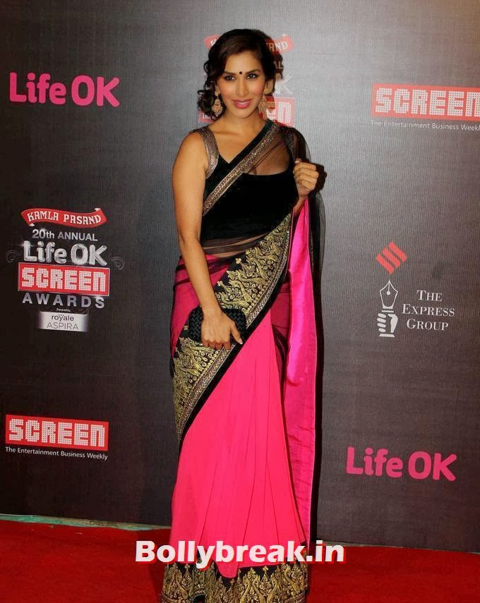 Sophie Choudry, 20th Annual Life OK Screen Awards Photos, Sophie Choudry on Red carpet of Different Award Functions