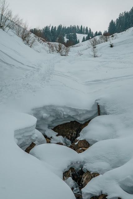 Skifahren in Saalfelden-Leogang  Entdecker im SalzburgerLand 11