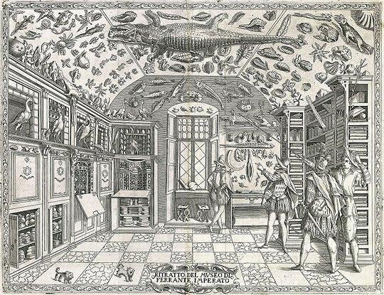 Morbid Anatomy: Lost Libraries and Fake Catalogs: A Renaissance