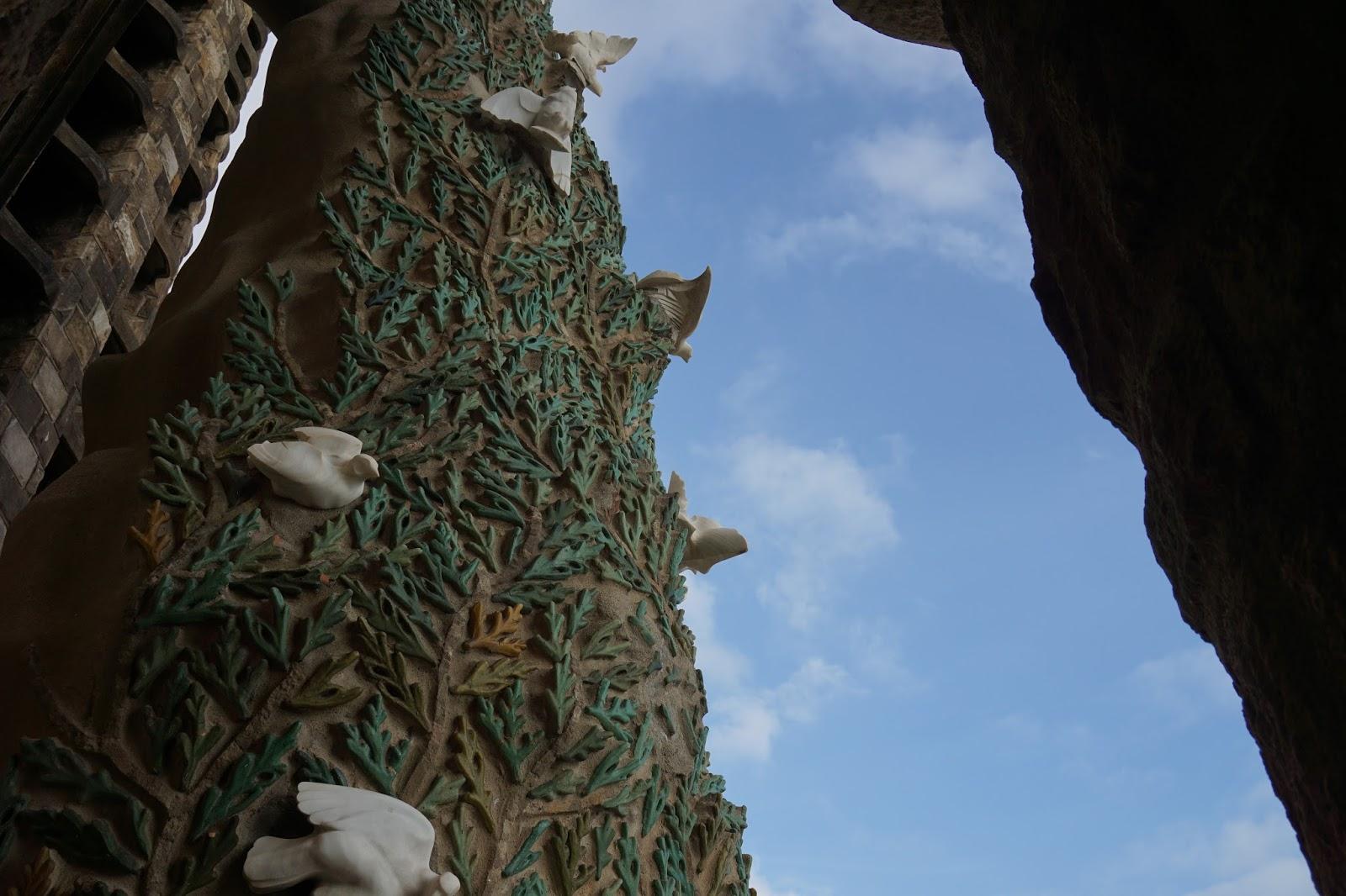 サグラダ・ファミリア (Sagrada Familia) イトスギにとまるハト