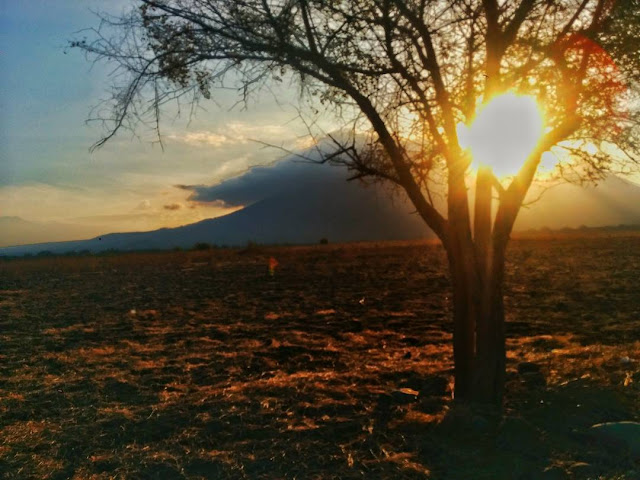 sunrise tn baluran