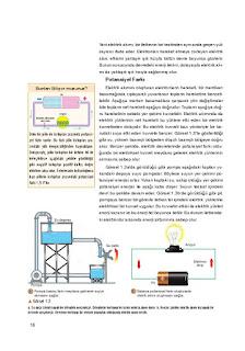 10. Sınıf Fizik Ders Kitabı Cevapları Berkay Yayınları Sayfa 16