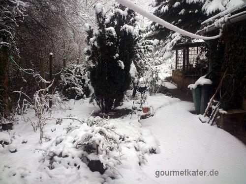 Schnee-Garten