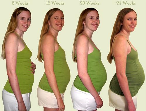 week by week pregnant