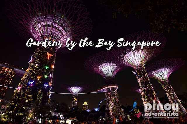 Free Things To Do in Singapore