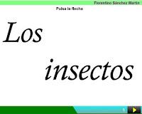 http://cplosangeles.juntaextremadura.net/web/edilim/curso_2/cmedio/animales02/insectos02/insectos02.html