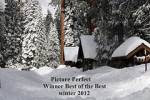 Best Of The Best Winter 2012