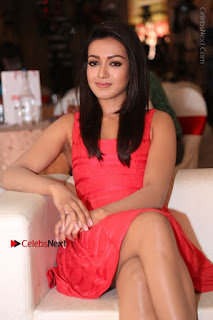 Actress Catherine Tresa Unveils Intex Air Conditioners  0088.jpg