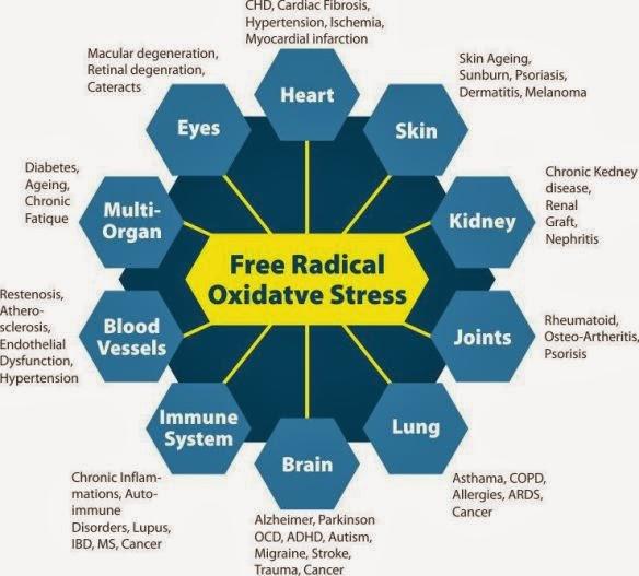 kesan buruk radikal bebas terhadap kesihatan