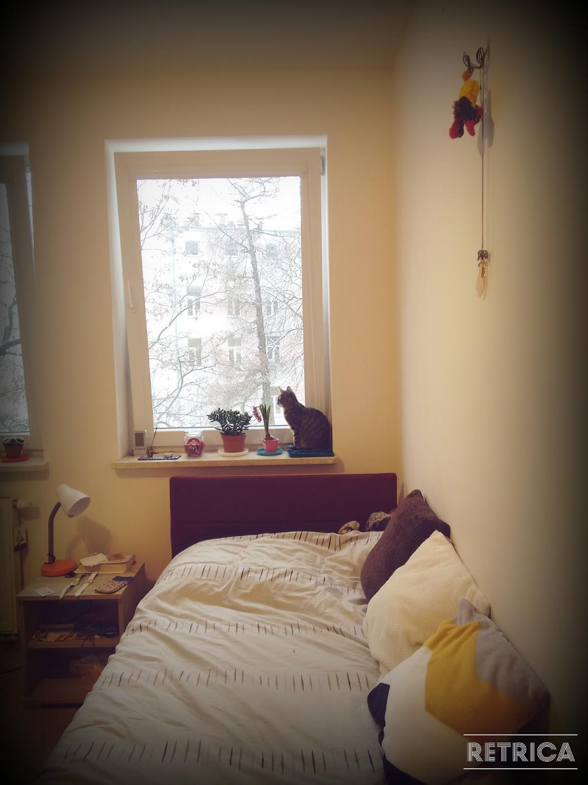 comment j 39 ai d m nag 3 fois en une semaine julie la blogtrotteuse. Black Bedroom Furniture Sets. Home Design Ideas