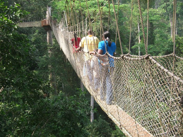 Hanging Chair Pakistan Cotton Covers For Weddings Craziest Architecture: 15 Scariest Bridges Of The World