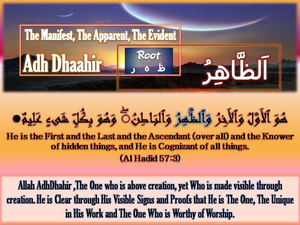 Who Has Seen Allah
