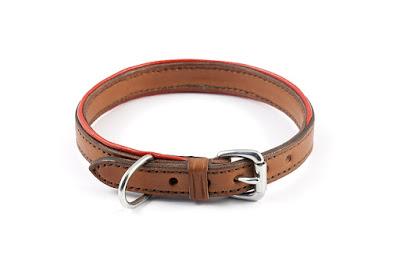 Collare in cuoio in taglia M foderato in pelle con bordi rossi e fibbia in acciaio