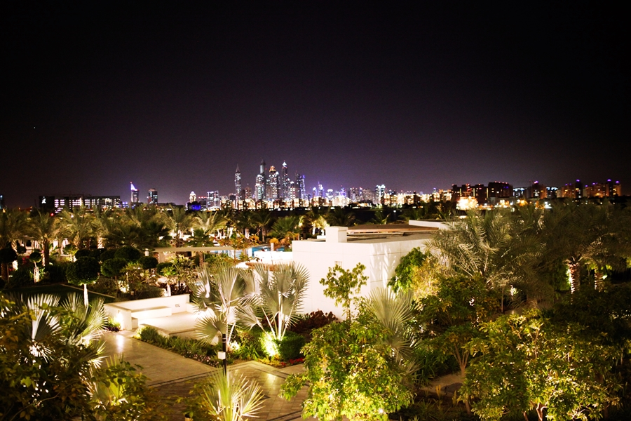palm city dubai island skyline