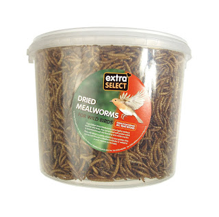 Best buy dried Mealworms suitable for Robins