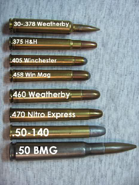 Ammo And Gun Collector Big Bore Rifle Cartridges