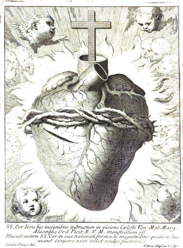 the sacred heart as a model for your heart the new theological