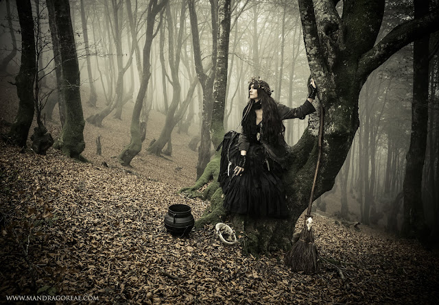 Aker Dantzaria Forest Witch with Fox Broomstick Besom Broom and Cauldron