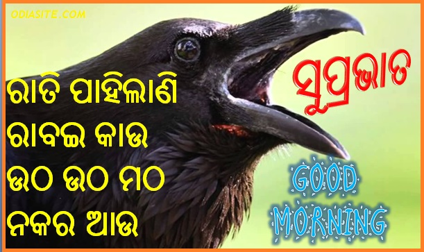 Odia good morning video download