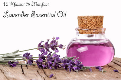 Image result for minyak lavender