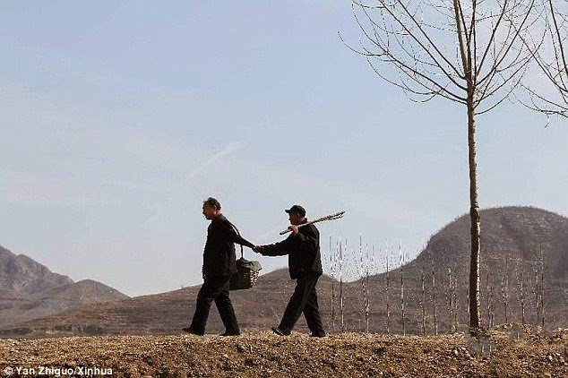 A blind man and his armless companion plant over 10,000 trees in China.jpg