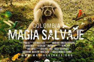 Colombia magia salvaje documental completo online dating. Colombia magia salvaje documental completo online dating.