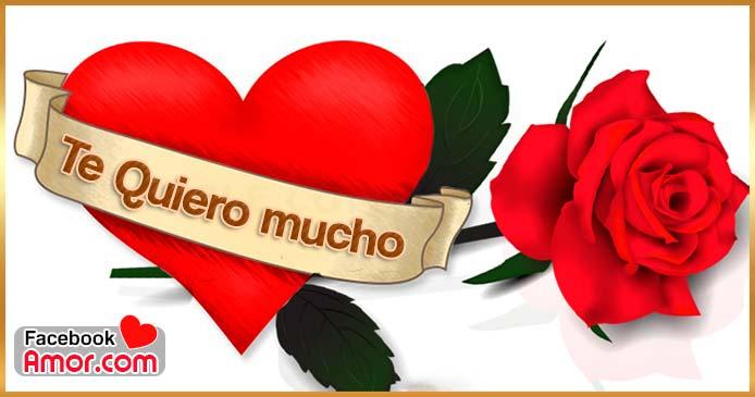 Te quiero mucho rosa roja