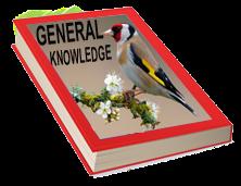 Kids General Knowledge