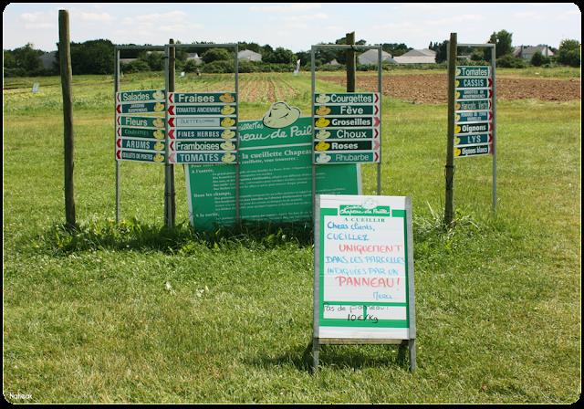 visite  de la ferme de Servigny