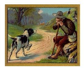Dongeng Kelinci dan Anjing Pemburu (Aesop) | DONGENG ANAK DUNIA
